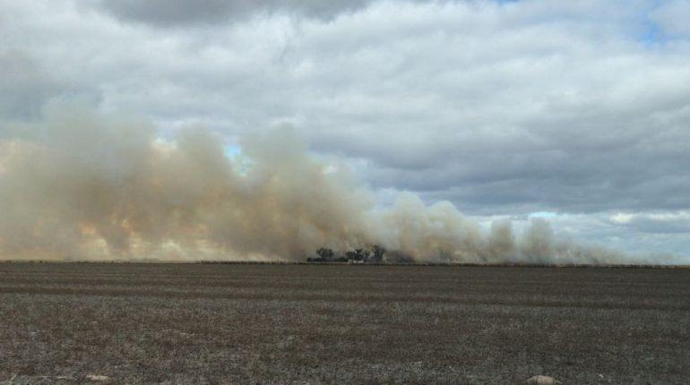 Fuego en un campo de la zona sur