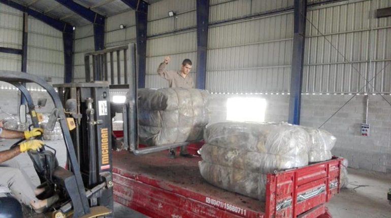 Cooperativa alborada exporta lana a Uruguay