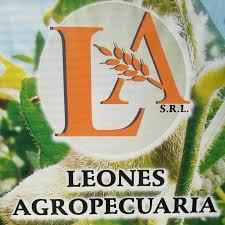 Situación de la empresa Leones Agropecuaria SRL