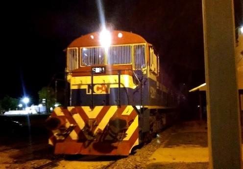 Una mujer se arrojó bajo un tren de carga
