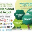 Día del Árbol: Jornadas simultáneas en cinco localidades