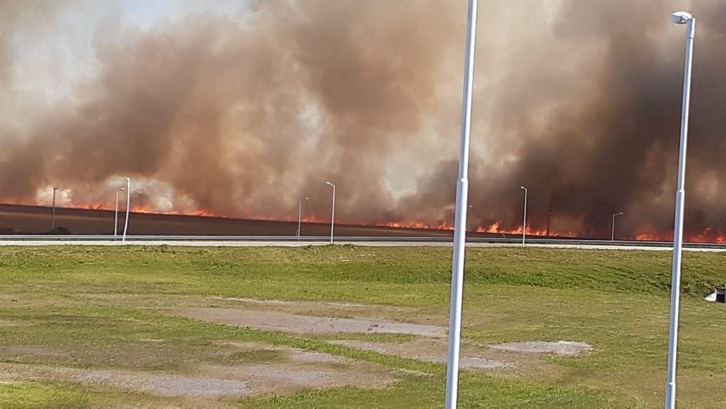 Incendio de campo en la zona de Gral Roca